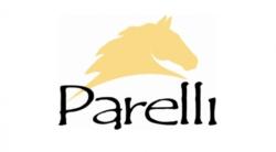 Parelli Natural Horsemanship logo